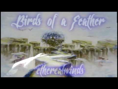♪ Erutan - Birds of a Feather cover by etherealwinds ♪