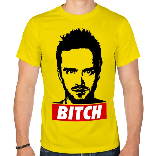 Jesse Pinkman - Bitch